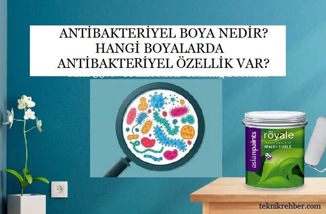 antibakteriyel boya