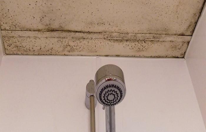 banyo tavanı rutubet önleme