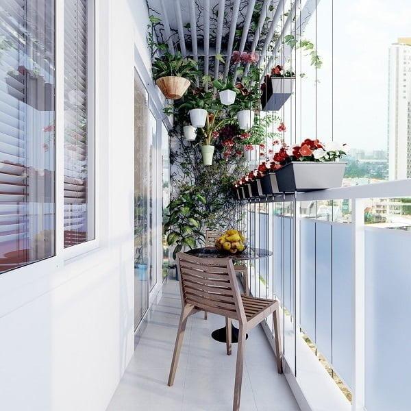 balkon dekorasyonu için bitkisi