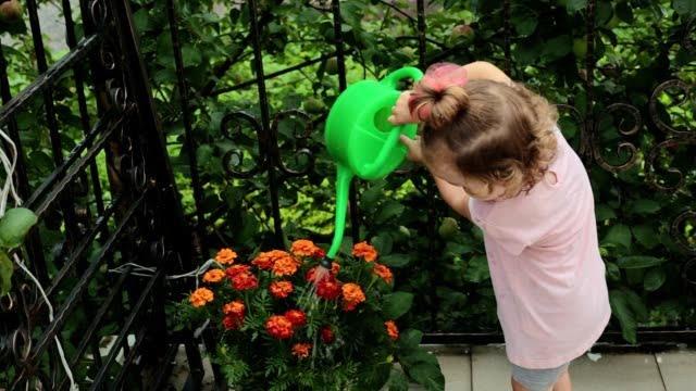 balkonda çiçek yetiştirme