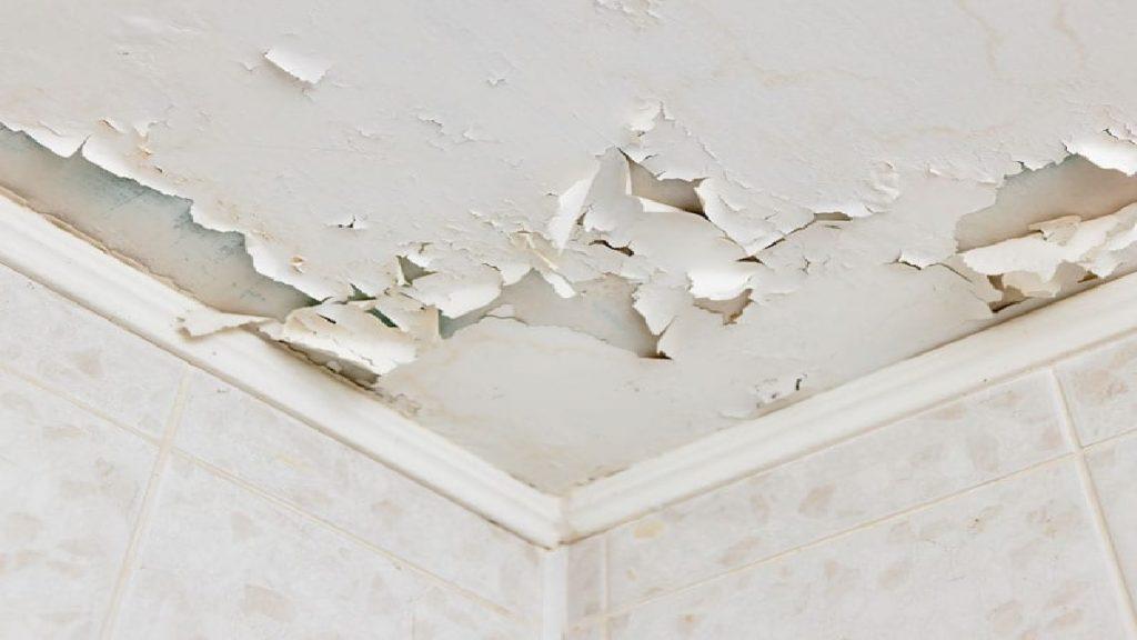 dökülen tavan nasıl boyanır